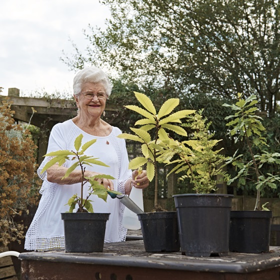 A resident gardening at a Royal British Legion care home