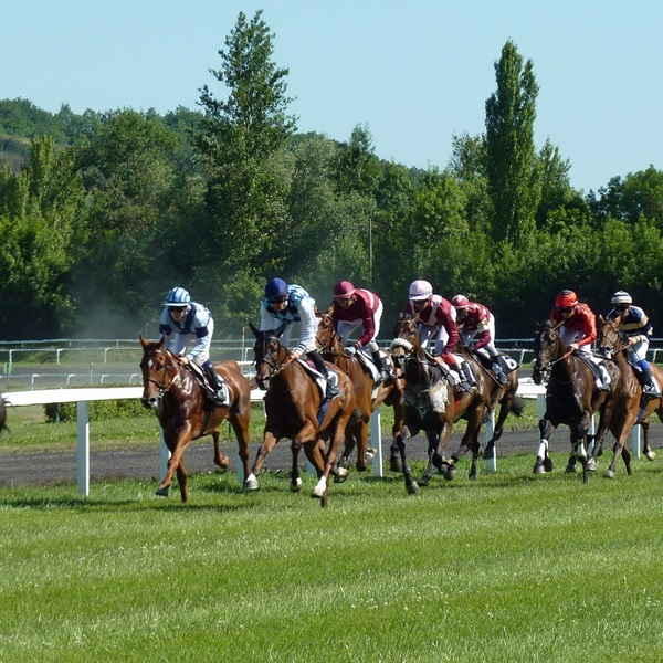 Horse racing at Newmarket Racecourse for Poppy Race Day