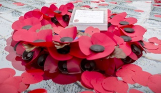 Poppy tribute for Alison Baskerville