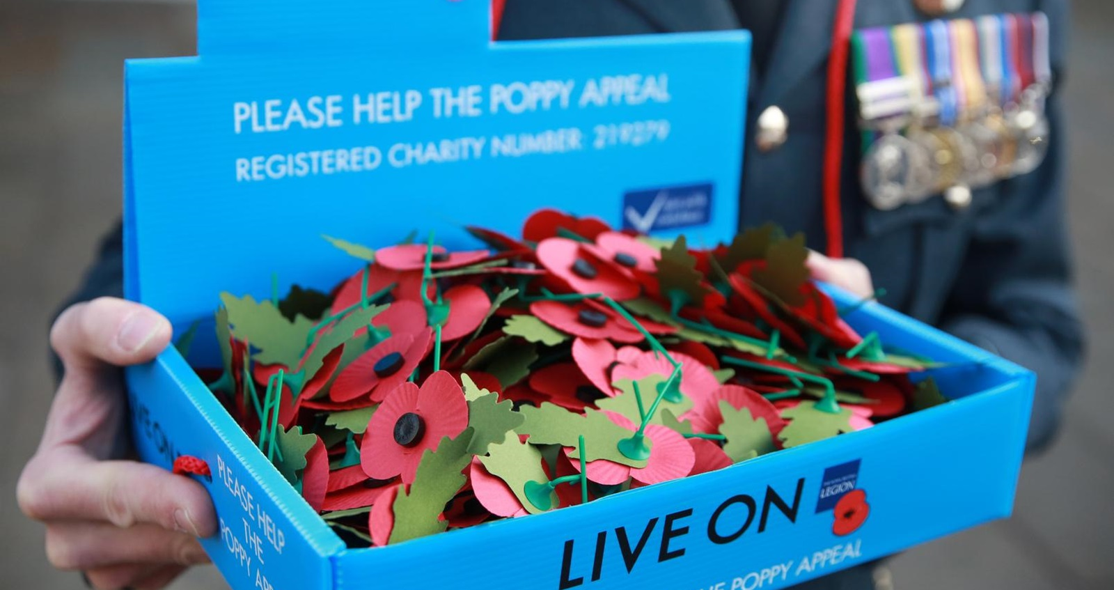 Royal British Legion paper poppies with leaves