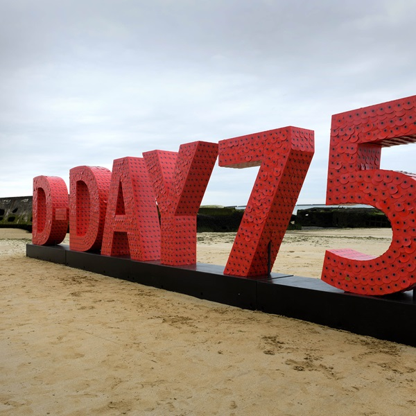 20,000 poppies arrive in Normandy